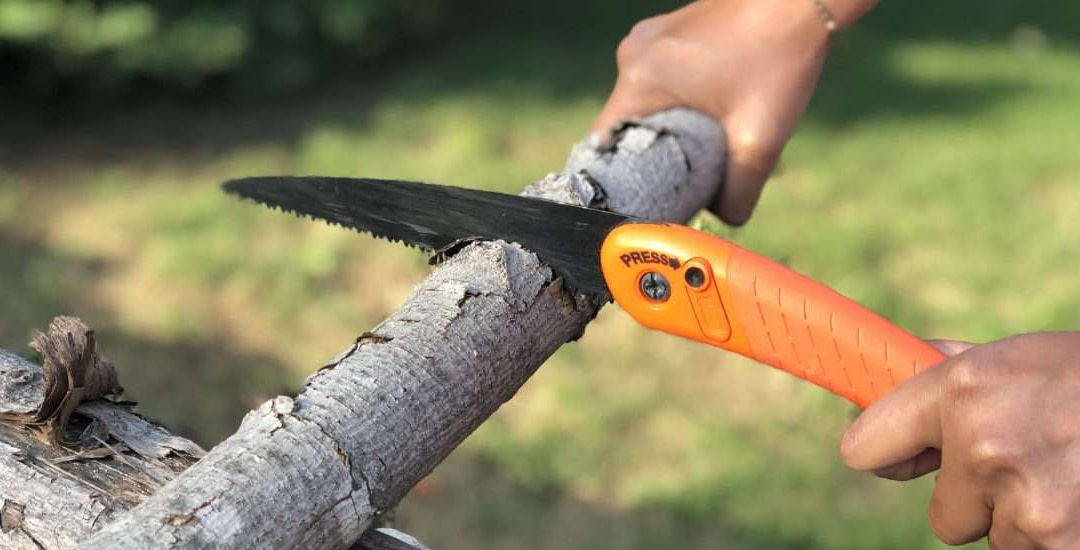 best camping saws