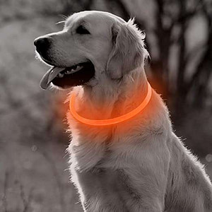 waterproof lighted dog collar
