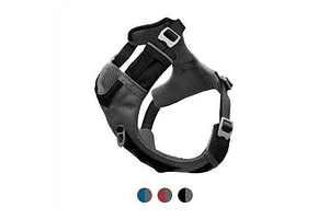 dog hiking harness
