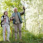Best Hiking Sticks for Seniors: TOP 10  Affordable Sticks [2021 Updated]